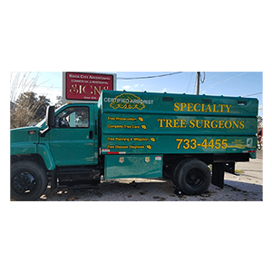 Vehicle-Lettering-Specialty-Tree-Services
